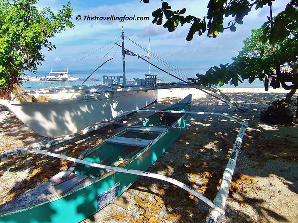 Bohol-Tropical-Island-Boats