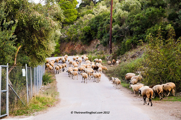 Greece-Country Road