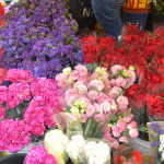 Dangwa Flower Market Manila