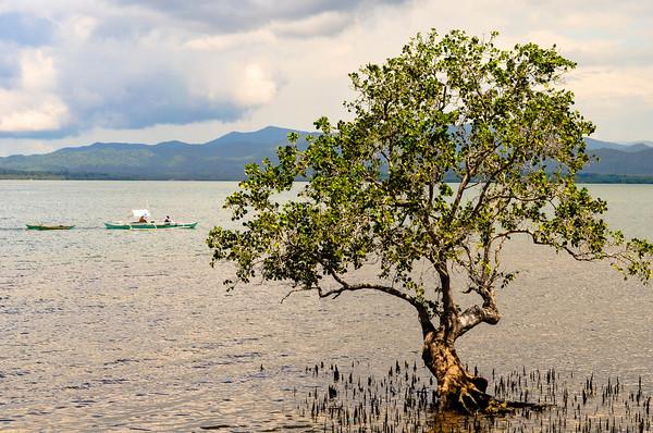 Philippine Fishing Boats